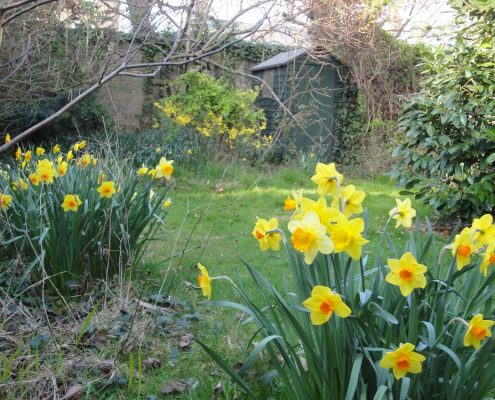 Spring at Cathedral House