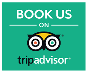 Book Us On Trip Advisor